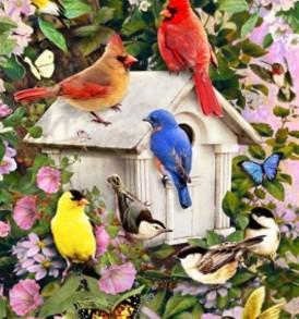 Birds Birdhouse 1987