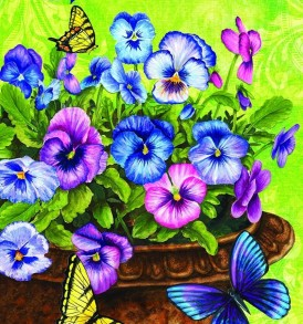 Pansy Welcome