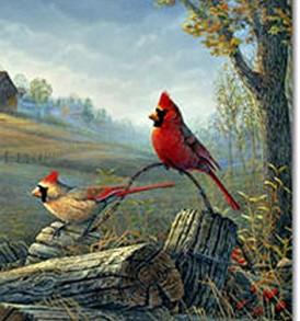 Autumn Cardinals
