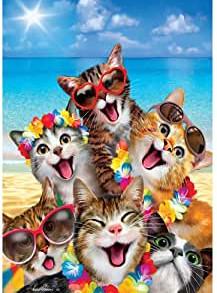 beach kittens