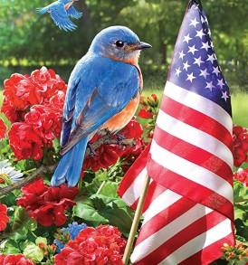 bluebird salute